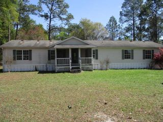 Foreclosed Home - 1253 Smith Rd, 31503